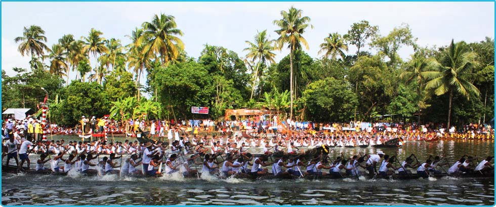 alleppey boat race rowers