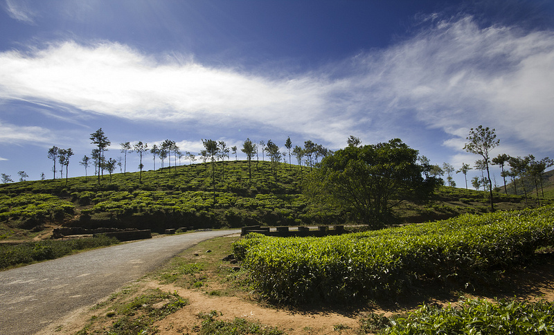 vagamon photos