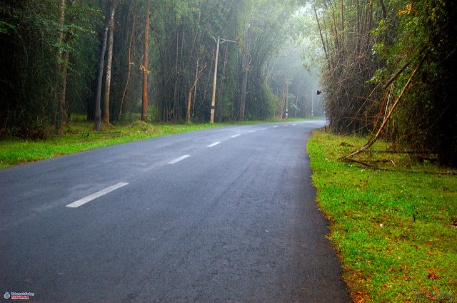 Kerala Points Interest 3 - Wayanad